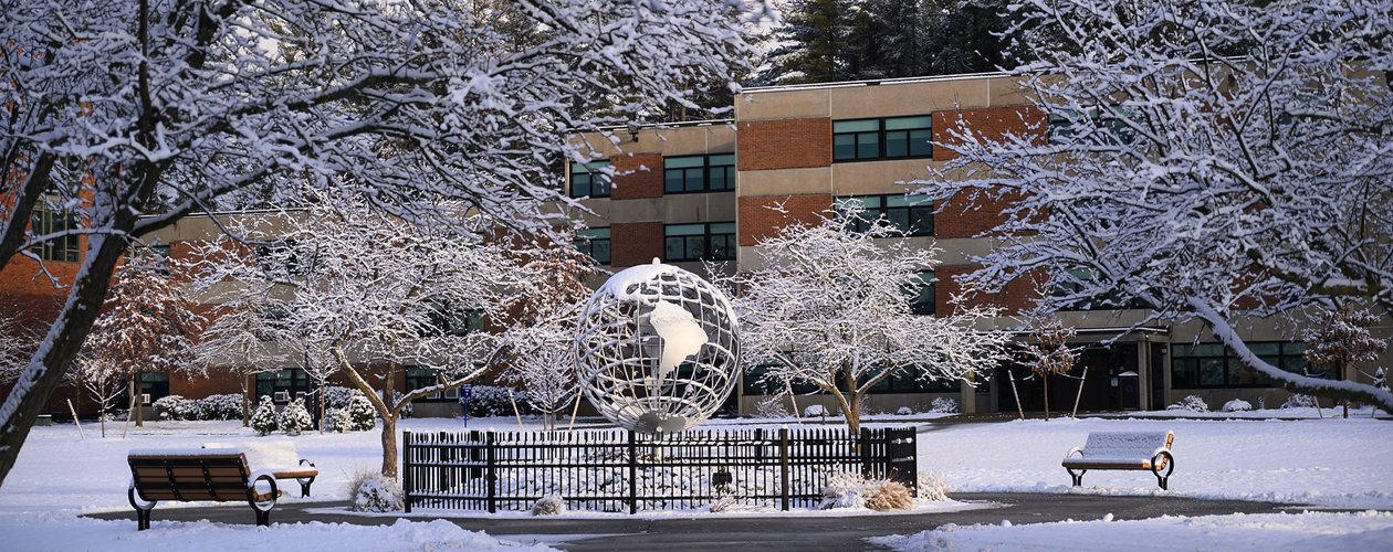 Globe covered in snow
