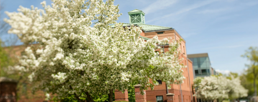 courtney hall in the spring