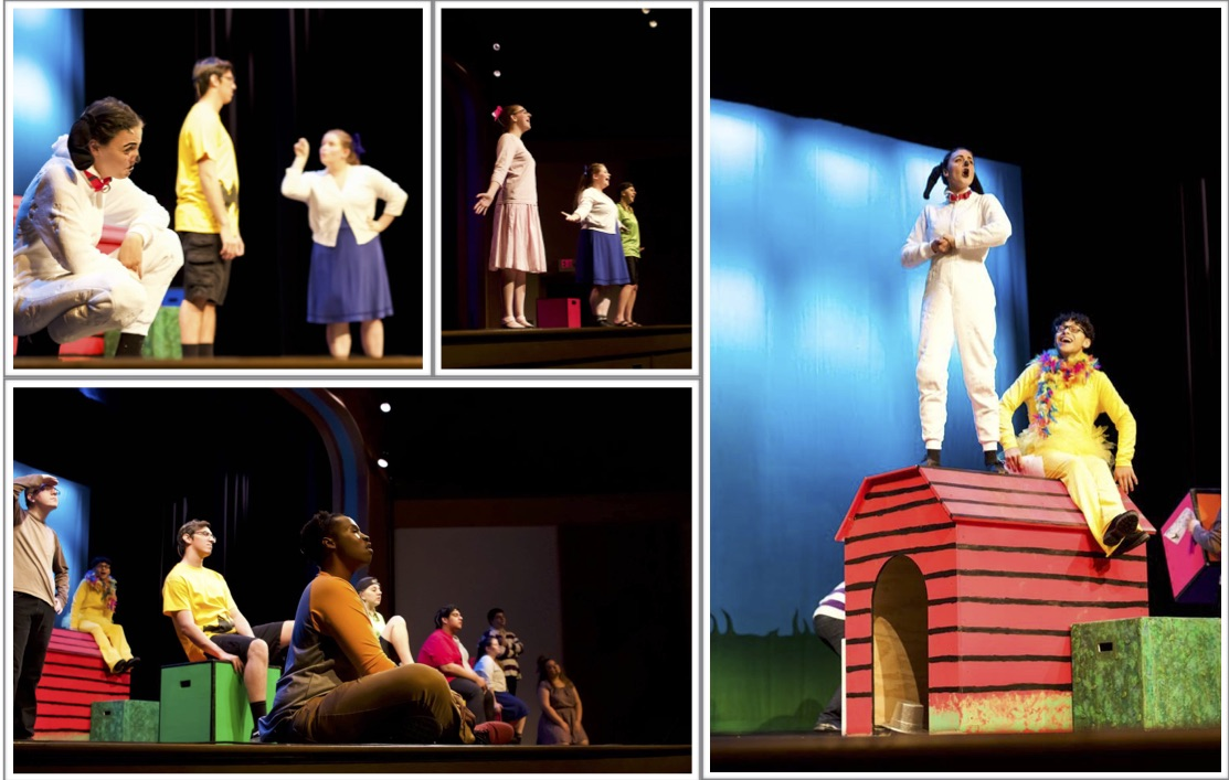 Scenes From A Play